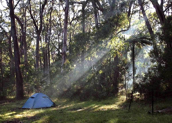 Campsite with tent in sunlight